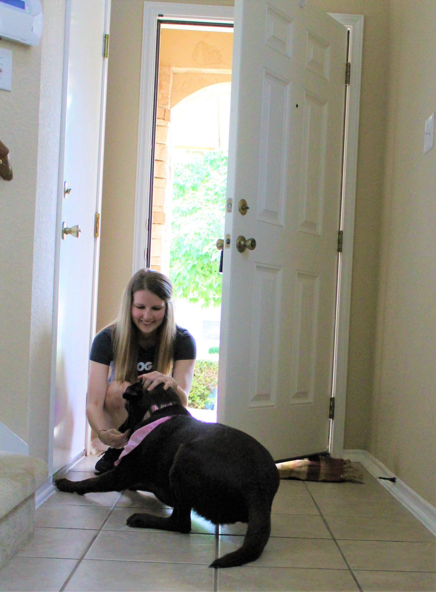 PupPupAndAwaySa Dog Training & Services San Antonio In home private training