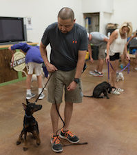 PupPupAndAwaySa Dog Training & Services San Antonio