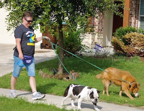 PupPupAndAwaySa Dog Training & Services San Antonio Dog Walking