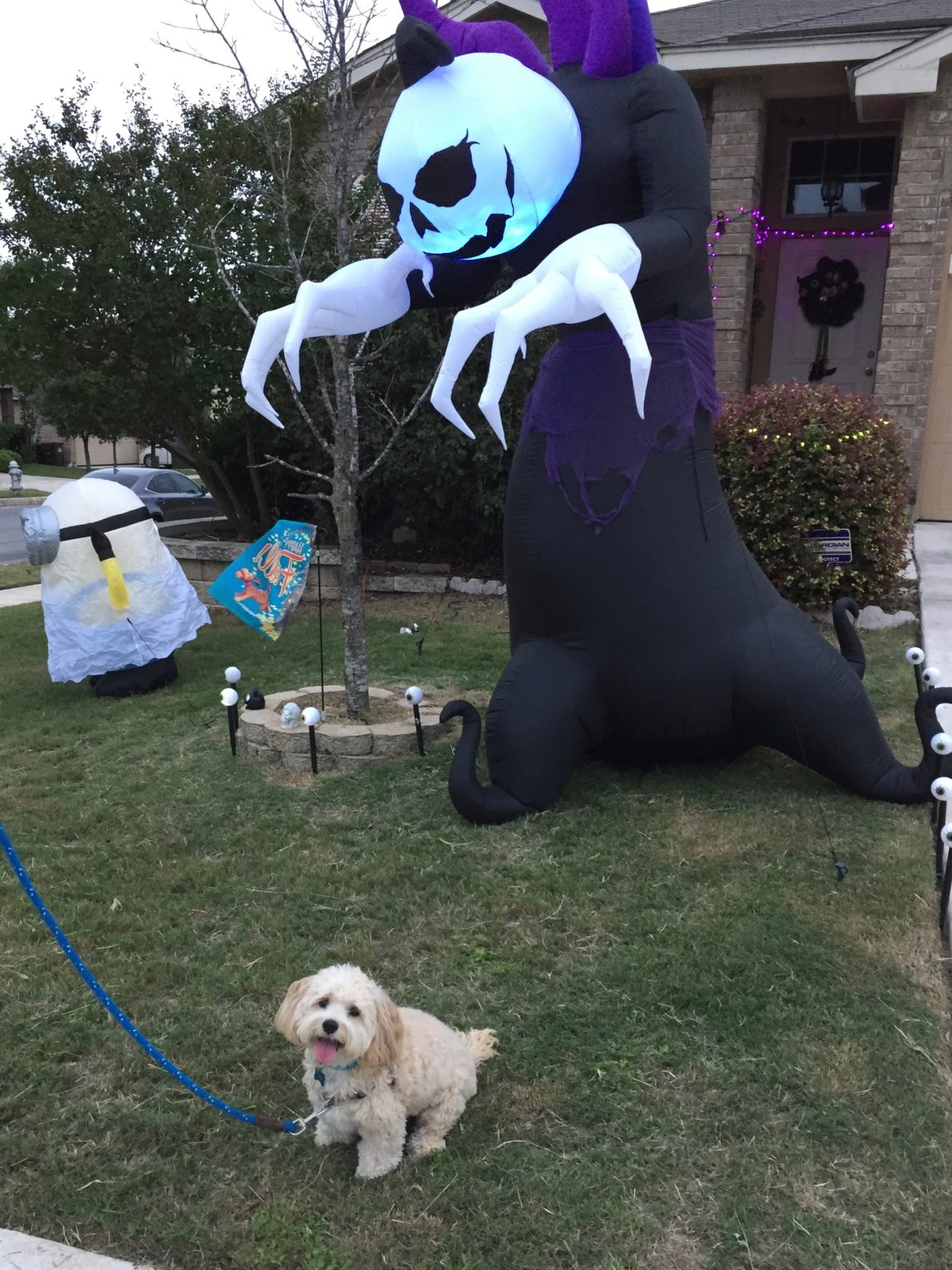 Taking the Spooky Out of Halloween Decorations
