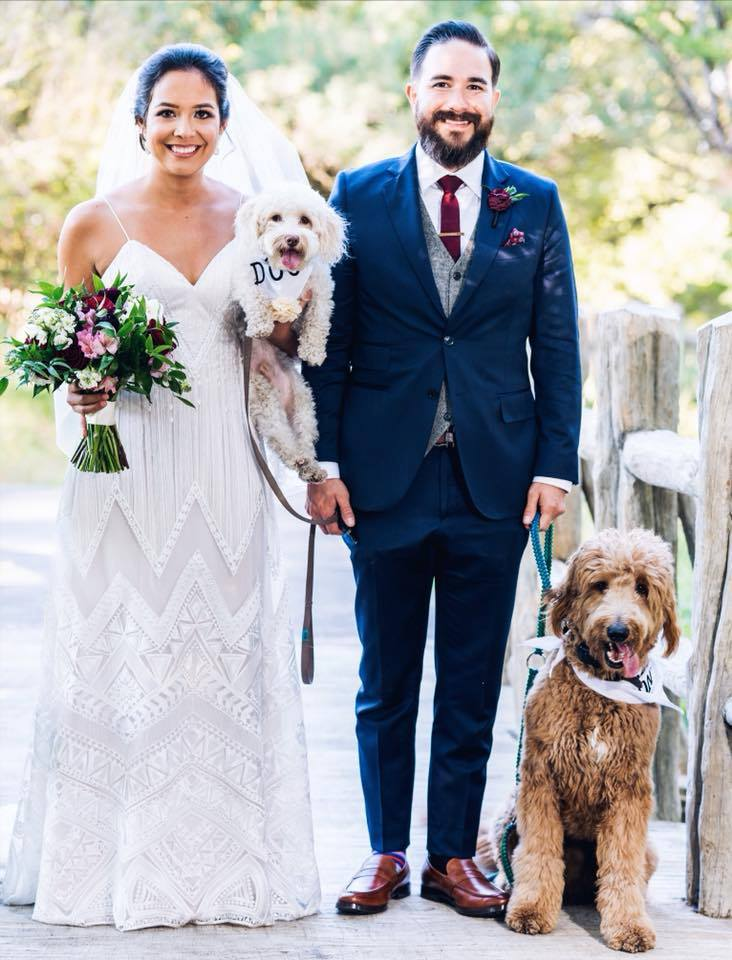 Training Your Dog For Your Wedding Day